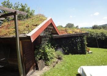 Sauna und Gästehütte