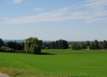 Immobilie Details Landwirtschaftliches Grundstück in Polling, Butterberg